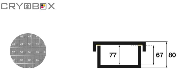 EPPI® boxes 130x130x80 mm high