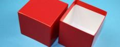 Cryoboxes 133x133x75 mm high